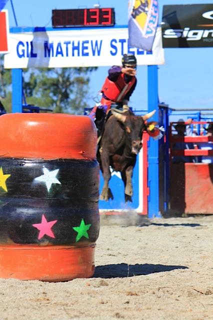 Wagga Rodeo Bounce