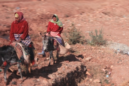 morocco woman on horse