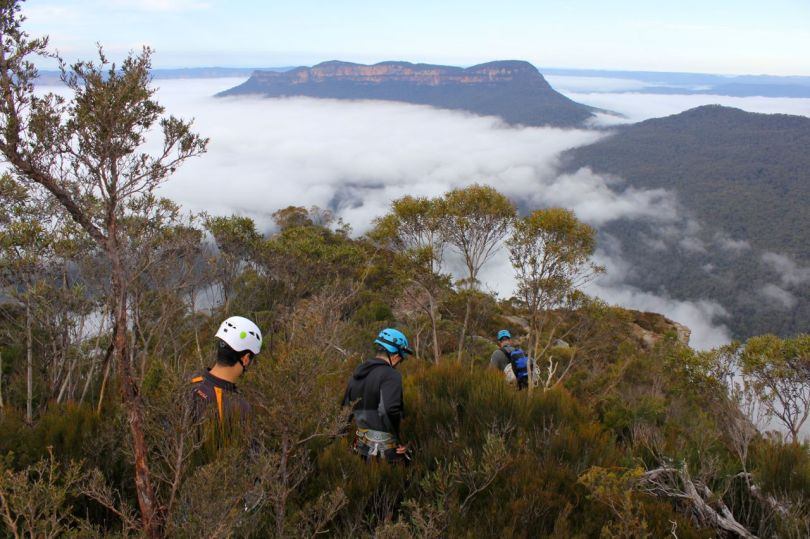 Malatia Wall Abseiling Blue Mountains